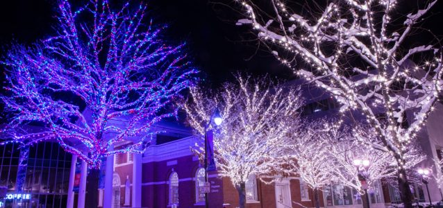 stamford downtown, holiday lights