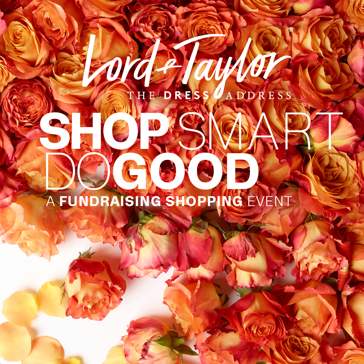 Lord And Taylor Flyer Altin Northeastfitness Co